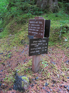 Carbon River Camp junction.