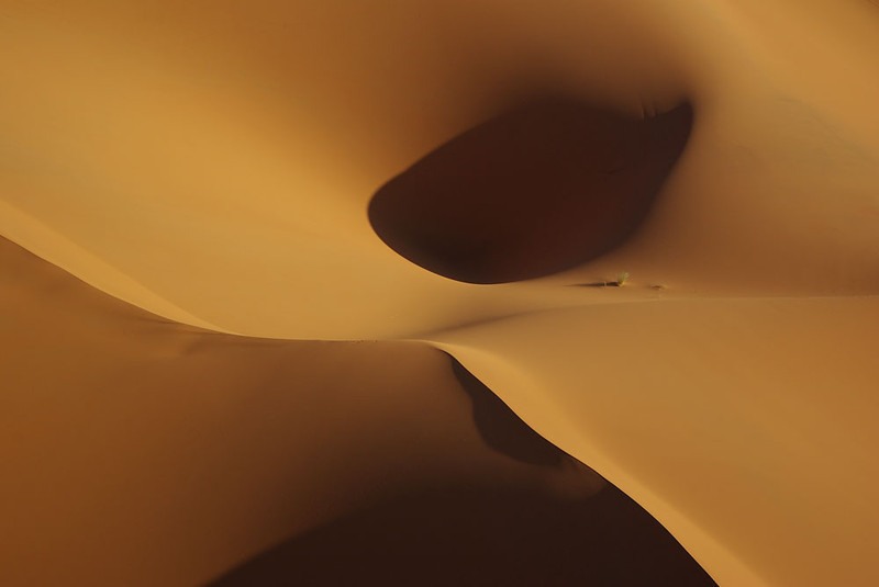 Sensual forms in the dunes, Sahara Morocco
