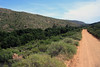 Road leading northward along the Rondegatrivier (Round Hole River) - from the Cederberg Valley to the town of Clanwilliam - Western Cape (province).