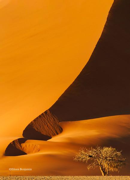 Sossusviei dunes - Namib-Naukluft National, Namibia