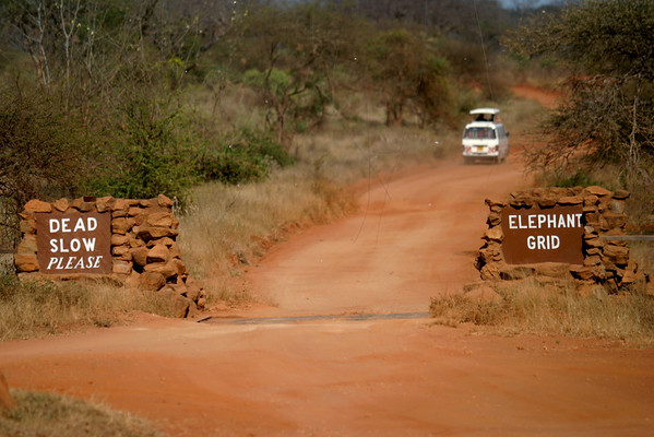 Tsavo West National Park, Kenya