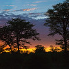 Sunrise in South Luangwa Park