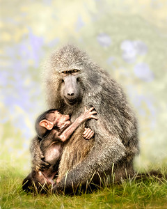 Staying Close to Mother