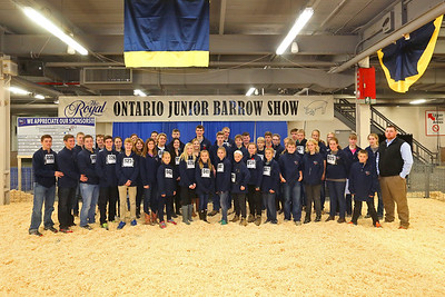 RAWF 2015 Ontario Junior Barrow Show Champions