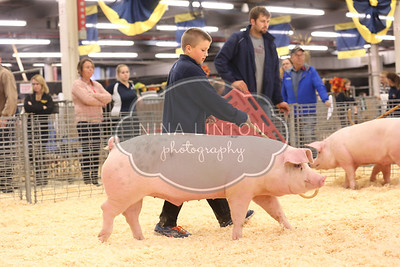 RAWF 2015 Ontario Junior Barrow Show Candids
