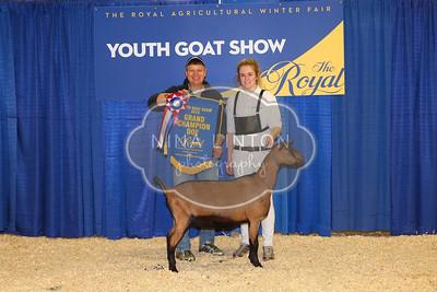 RAWF 2015 Junior Goat Show Champions