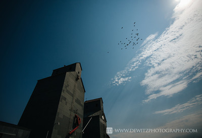 grain_elevator_valley_city_flying_pigeons