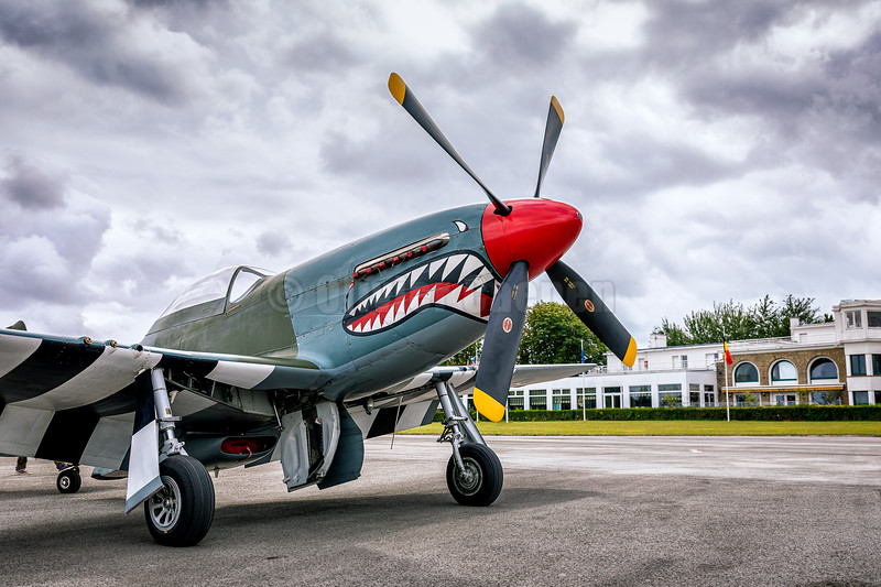North American P-51D Mustang (G-SHWN) © 2019 Olivier Caenen, tous droits reserves