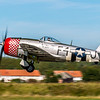 "Republic P-47D Thunderbolt (G-THUN) ""Nellie B"" © 2019 Olivier Caenen, tous droits reserves"