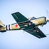 Yak 52 00-CCP © 2019 Olivier Caenen, tous droits reserves