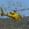 Aerospatiale SA 341G Gazelle YU-HES © 2016 Olivier Caenen, tous droits reserves