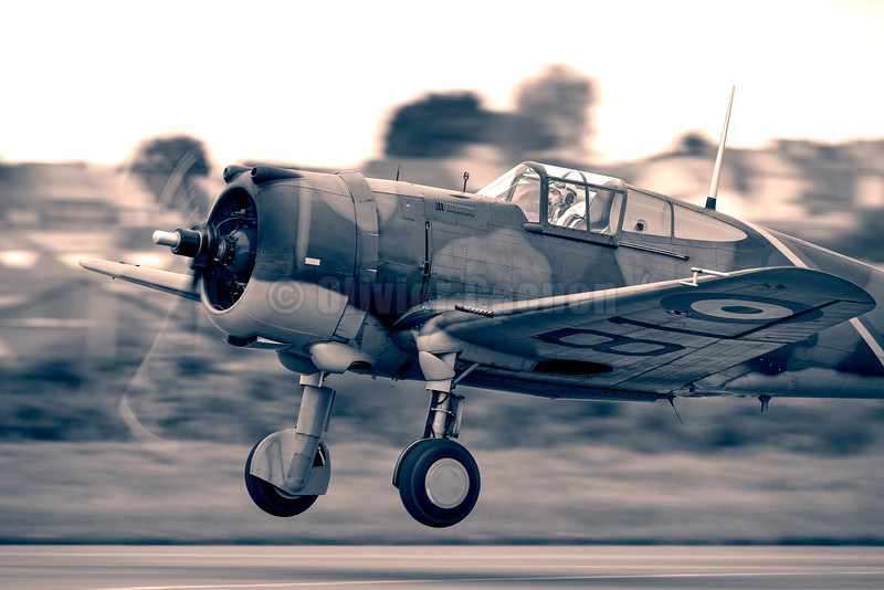 Curtiss P-36 Hawk / Hawk Model 75