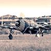 Republic P47 Thunderbold Razorback P-47 SNAFU