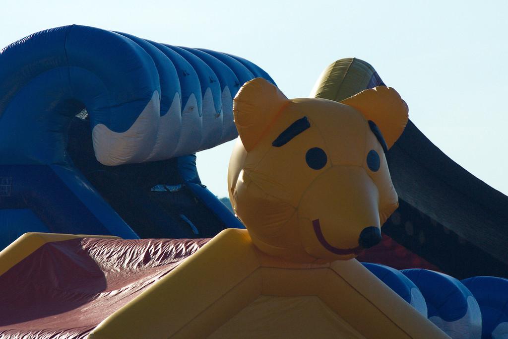 2012 Festival of Balloons - Dansville NY