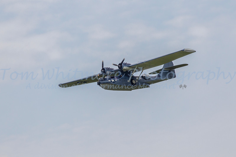 Wabirds over the Beach 2014 at Pungo, VA