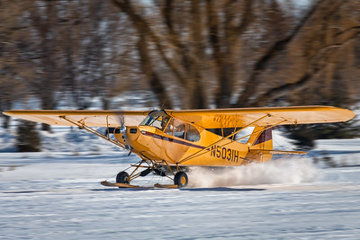 Piper PA-11 on Skis