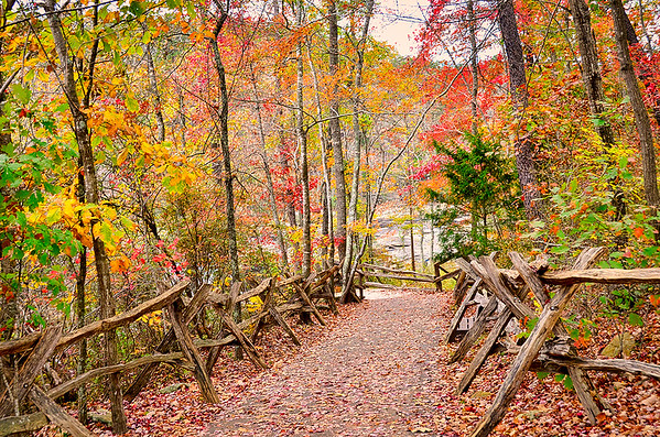 Fall colors abound on the path to view the raging Little River ahead. - Little River Canyon National Preserve, Alabama