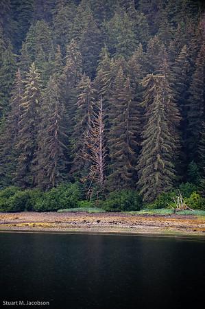 alaska 2010-38418