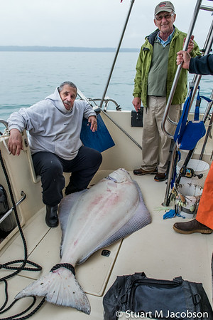 Bob's big Halibut! 235lb. It was released just after this photo. Part of Thursday's catch.
