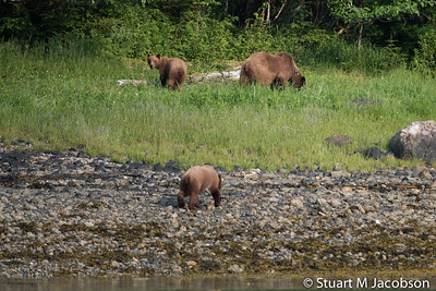 Alaska2015-9500