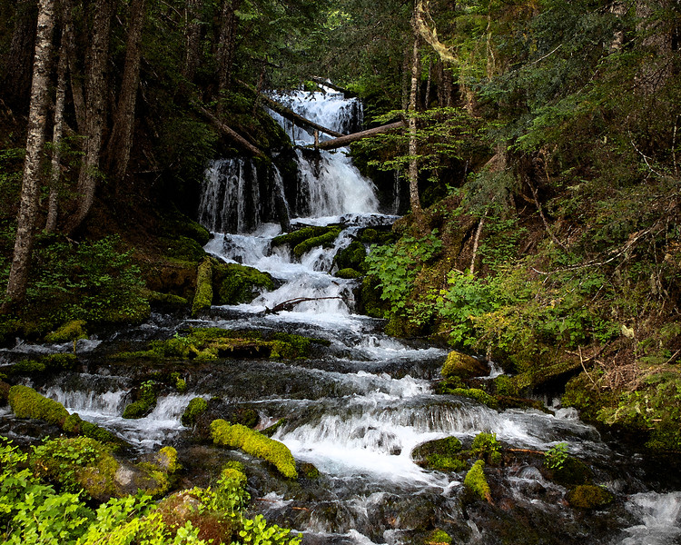 Waterfall <br /> Washington State<br /> watercolor/fine art photograph