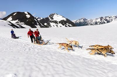 Dog Sledding in Punch Bowl Glacier in the Chugach Mountains near Girdwood Alaska with Alpine Air