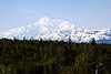 Mount McKinley - Denali National Park