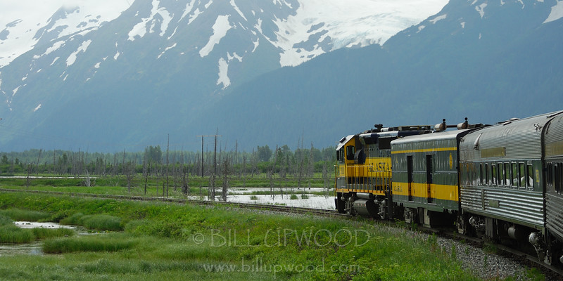 Alaska By Train