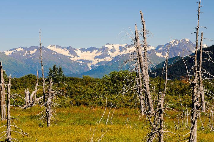 20100825-Alaska-Sew-Anchorage-Wed-0009