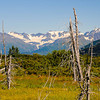 20100825-Alaska-Sew-Anchorage-Wed-0009