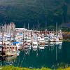 Alaska-Whittier-Sun-289