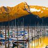 Alaska-Seward-boat-Thurs-934