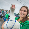 "Michaella Rice, a 4-H member and incoming freshman at UAF, carried a friend through the rain for much of the 2012 Golden Days parade.  <div class=""ss-paypal-button"">Filename: AKA-12-3472-44.jpg</div><div class=""ss-paypal-button-end"" style=""""></div>"