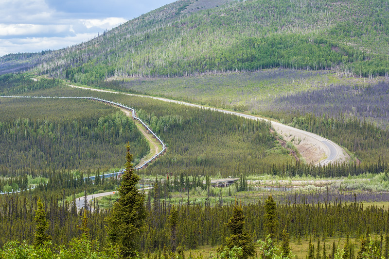 """The Dalton Highway parallels the trans-Alaska pipeline as it stretches north to Alaska's arctic coast.  <div class=""""ss-paypal-button"""">Filename: AKA-14-4213-042.jpg</div><div class=""""ss-paypal-button-end""""></div>"""