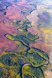 An aerial view of the boreal forest somewhere north of Fairbanks in early September.  Filename: AKA-13-3929-48.jpg