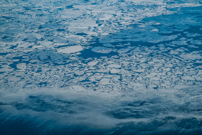 "Melting sea ice meets open water in Norton Sound in April, 2016.  <div class=""ss-paypal-button"">Filename: AKA-16-4866-17.jpg</div><div class=""ss-paypal-button-end""></div>"