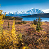 "Mt. McKinley and Wonder Lake are scene amidst autumn splendor in Denali National Park and Preserve.  <div class=""ss-paypal-button"">Filename: AKA-13-3942-308.jpg</div><div class=""ss-paypal-button-end"" style=""""></div>"