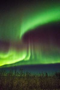 A colorful aurora display lights up a January night sky a few miles north of Fairbanks.  Filename: AKA-15-4430-050.jpg