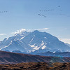 "Mt. McKinley is North American's highest peak.  <div class=""ss-paypal-button"">Filename: AKA-13-3942-192.jpg</div><div class=""ss-paypal-button-end"" style=""""></div>"