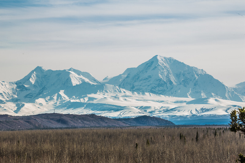 "The Alaska Range seen in late spring near Delta Junction.  <div class=""ss-paypal-button"">Filename: AKA-13-3845-131.jpg</div><div class=""ss-paypal-button-end"" style=""""></div>"