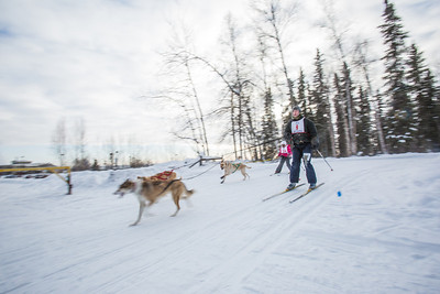 Members of the Alaska Skijor & Pulk Association race on the UAF ski trails during a scheduled event in Feb., 2013.  Filename: AKA-13-3731-98.jpg