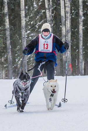 Members of the Alaska Skijor & Pulk Association race on the UAF ski trails during a scheduled event in Feb., 2013.  Filename: AKA-13-3731-120.jpg