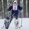 "Members of the Alaska Skijor & Pulk Association race on the UAF ski trails during a scheduled event in Feb., 2013.  <div class=""ss-paypal-button"">Filename: AKA-13-3731-120.jpg</div><div class=""ss-paypal-button-end"" style=""""></div>"