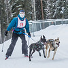 "Members of the Alaska Skijor & Pulk Association race on the UAF ski trails during a scheduled event in Feb., 2013.  <div class=""ss-paypal-button"">Filename: AKA-13-3731-115.jpg</div><div class=""ss-paypal-button-end"" style=""""></div>"
