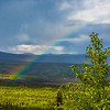 "A rainbow appears over the forest along the Elliot Highway, about 50 miles north of Fairbanks.  <div class=""ss-paypal-button"">Filename: AKA-14-4213-239.jpg</div><div class=""ss-paypal-button-end""></div>"