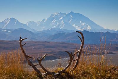 Mt. McKinley dominates the skyline near Eielson Visitors Center in Denali National Park and Preserve.  Filename: AKA-10-2879-115.jpg