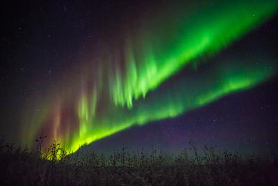 A colorful aurora display lights up a January night sky a few miles north of Fairbanks.  Filename: AKA-15-4430-045.jpg