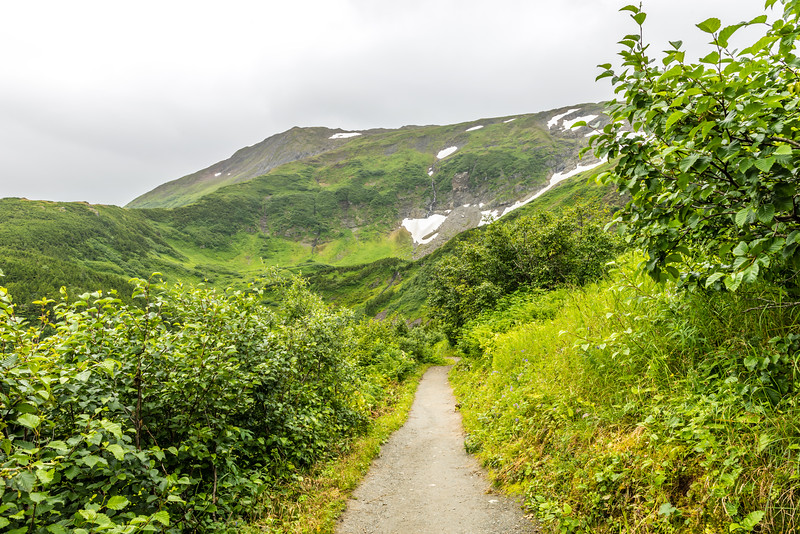 Hiking the Mount Roberts Trail
