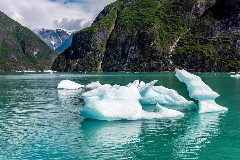 Jagged Ice