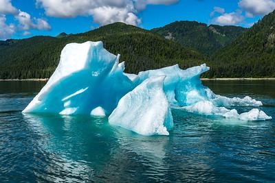Jagged Iceberg Pieces